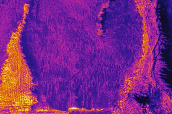 サーモカメラでの各種調査(鳥獣害、森林、施設等)