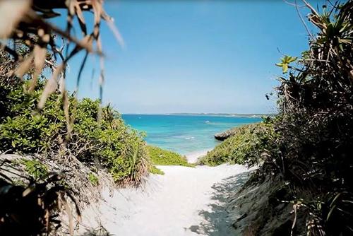 「JAL どこかにマイル南の島~那覇・鹿児島発~ 南の島の魅力、再発見」の空撮を担当させていただきました。